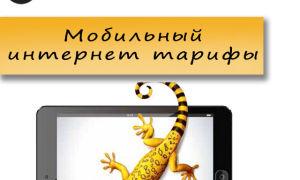 Выгодные тарифы Билайн для мобильного интернета
