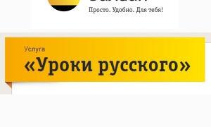 Как отключить услугу «Уроки русского» на Билайн