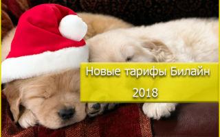Новые тарифные планы оператора Билайн на 2018 год для всех категорий абонентов